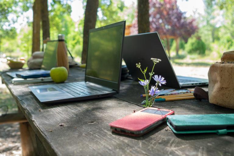 ordenadores y naturaleza ecoworking